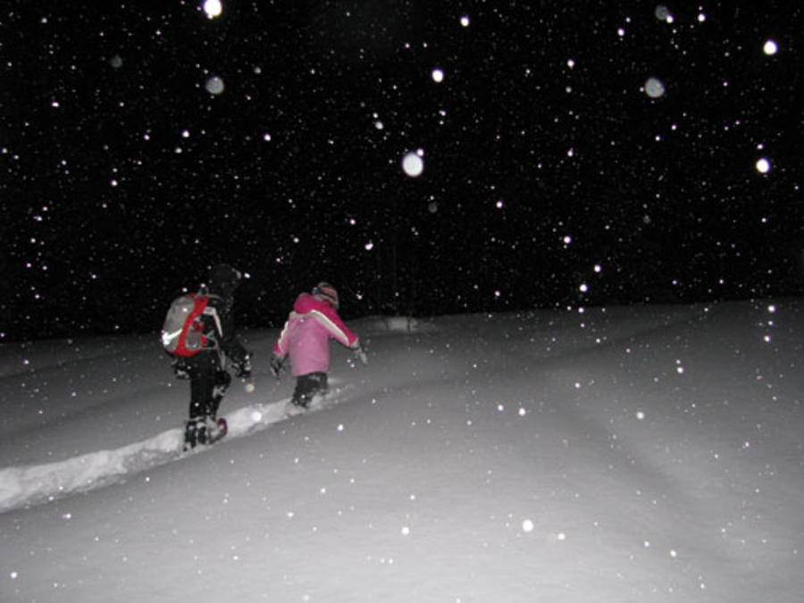 Oak Hammock Marsh night snowshoe