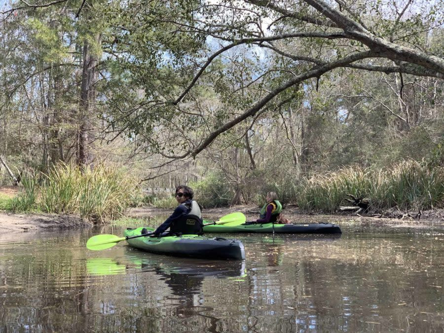 Blog Post Only Kayaking Bayou Adventure