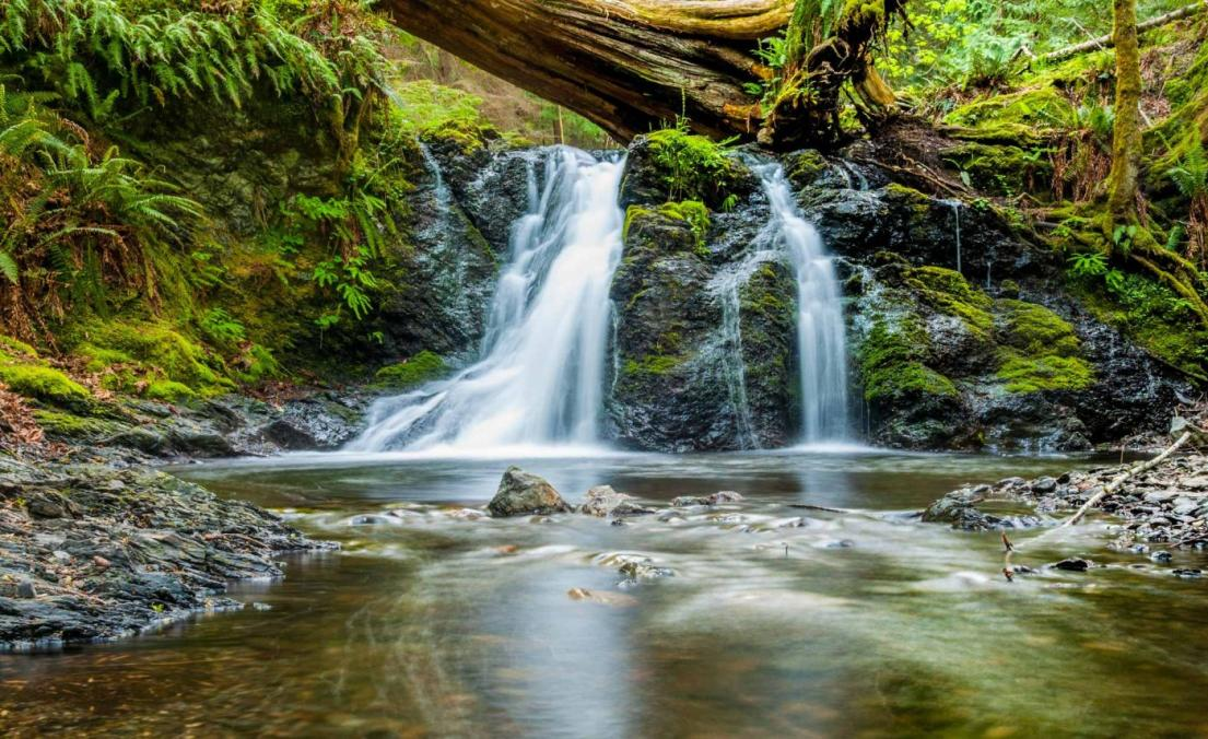 A waterfall tumbles through the lush forest of the Great Smoky Mountains.