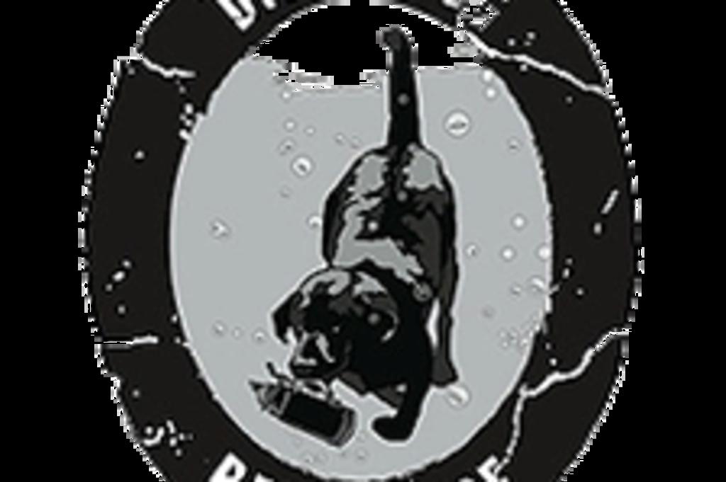 Diving Dog logo