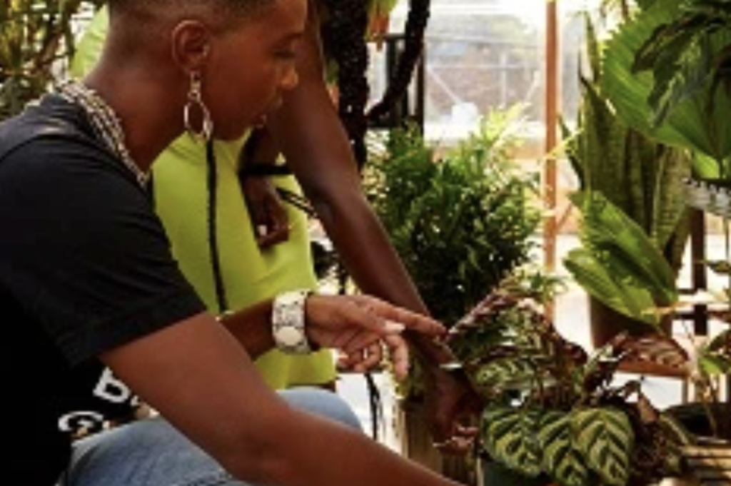 Black Girls Greenhouse