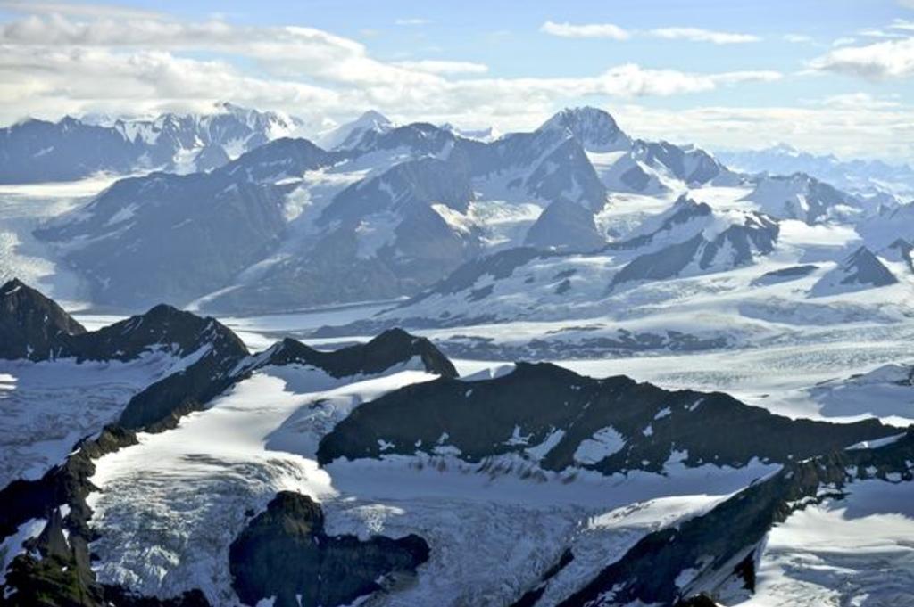 Glacier & Wildlife Flightseeing.jpg