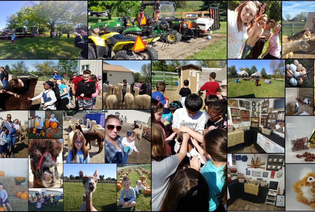 Farm Day - Open To Public!