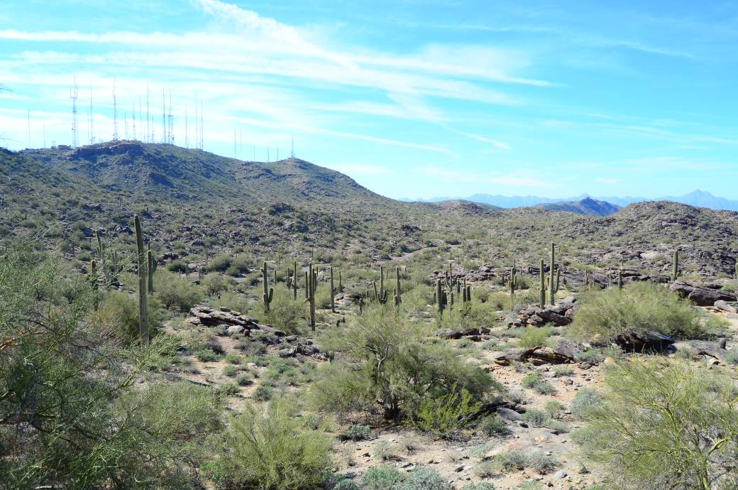 Javelina Canyon at South Mountain Park and Preserve, credit: Teresa Bitler