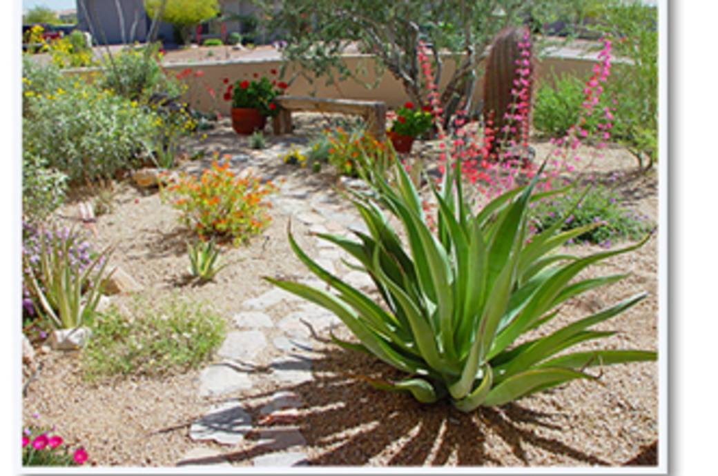 Xeriscape Demonstration Garden