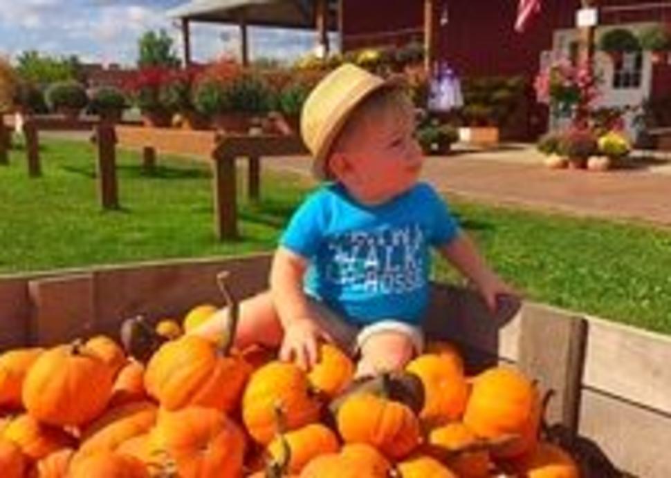 boy in gourds