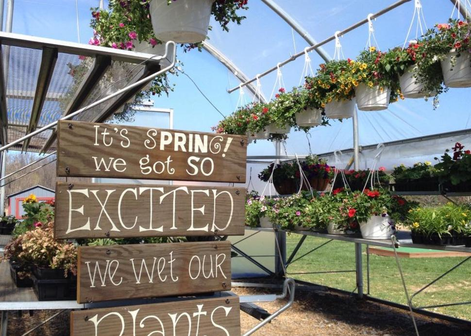 Flowers, fresh farm food, and family fun at Wickham Farms