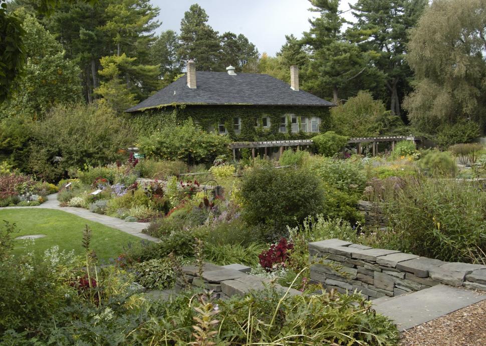 Plantations botanical garden Julie Migura.tif