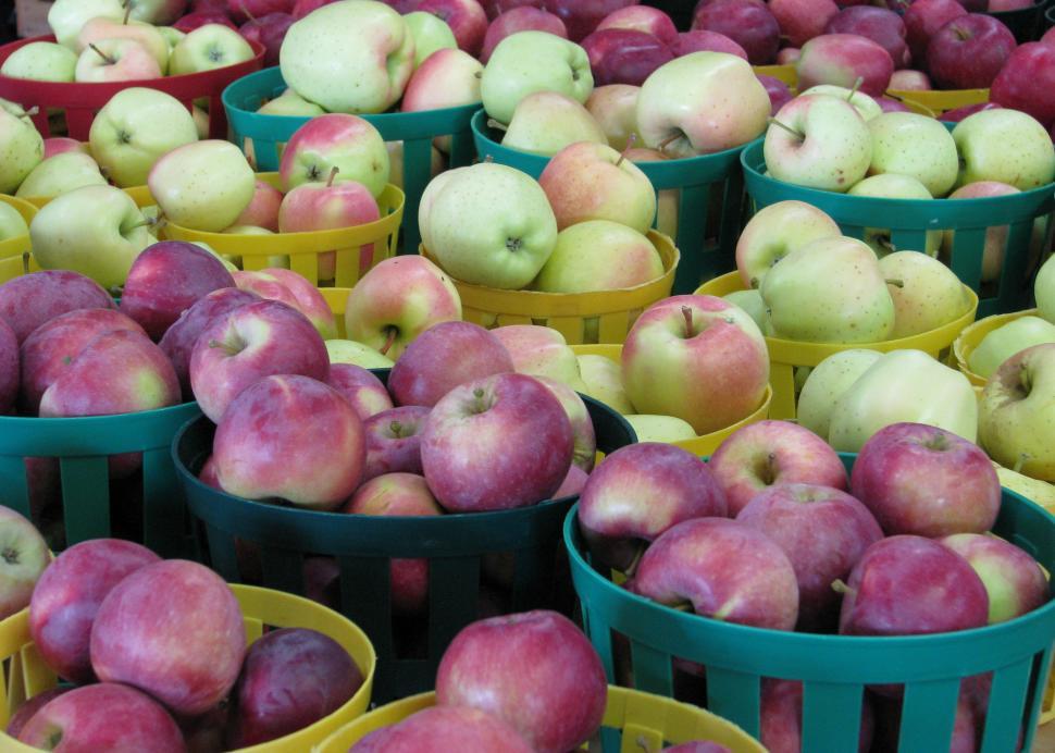 Wayne County apple bounty