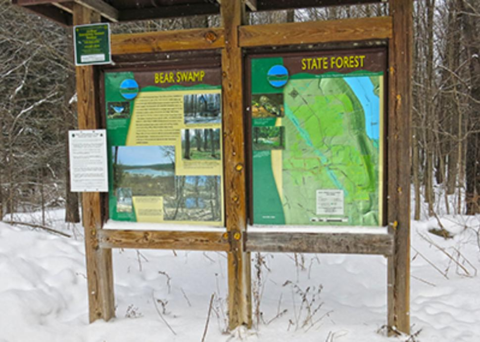 Bear Swamp State Forest in the Winter