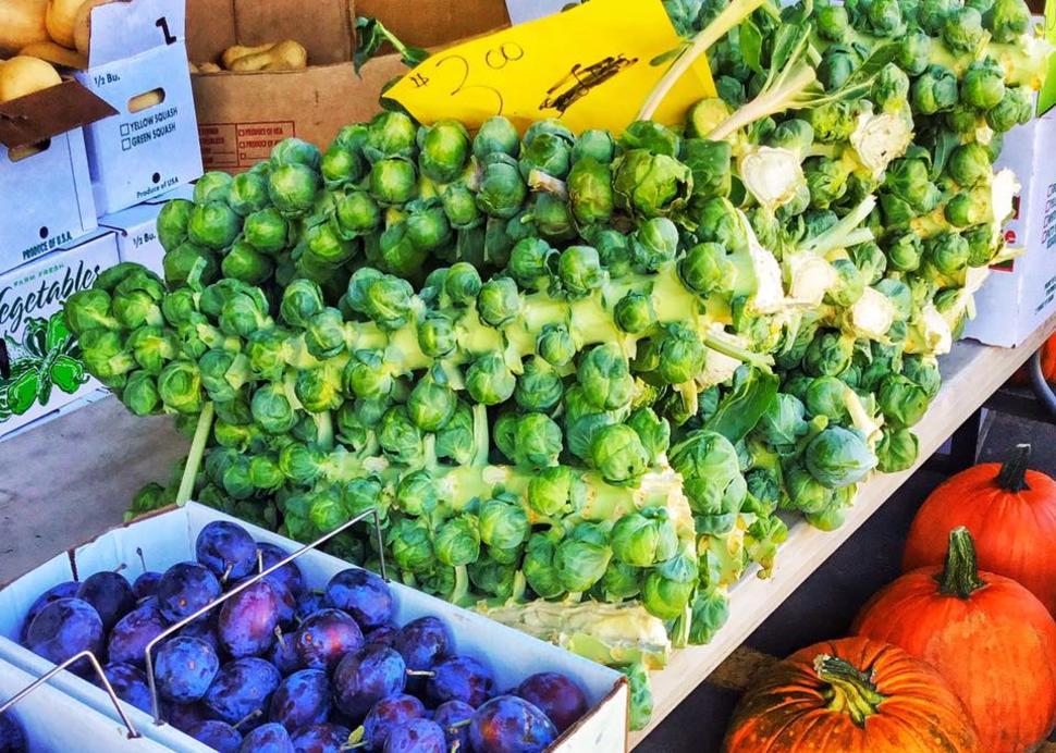 Central New York Regional Farmers Market
