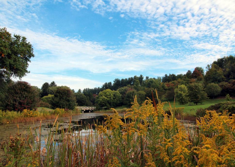 Cornell Botanic Garden view