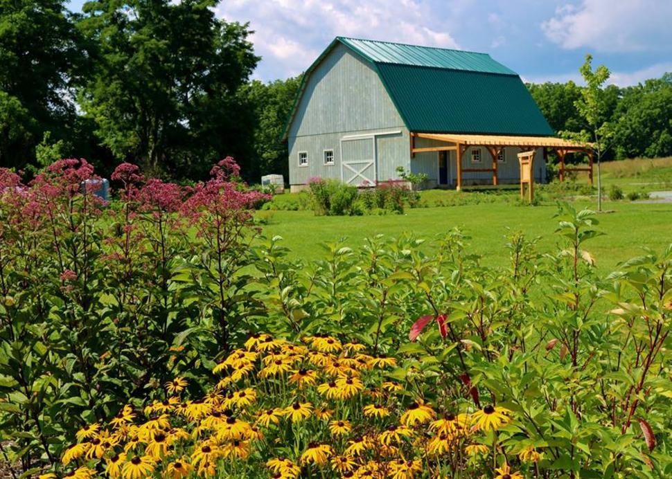 Creekside Center Flowers, Photo Credit: Helen Heizyk