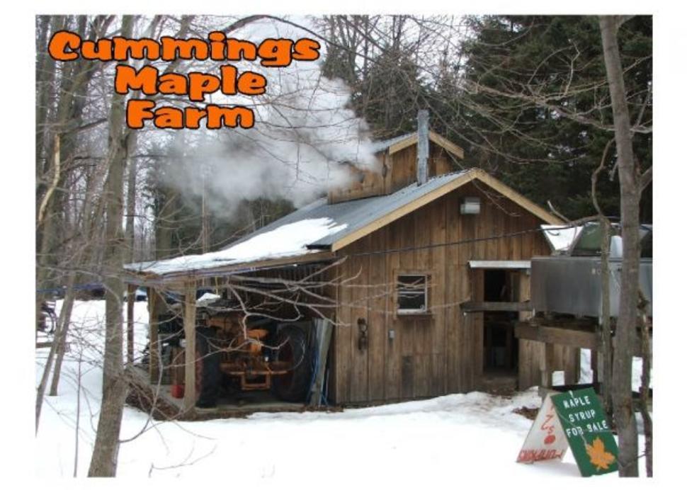Cummings Maple