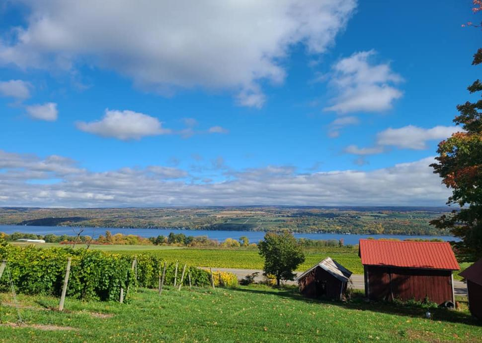 Views from Fulkerson Winery vineyards