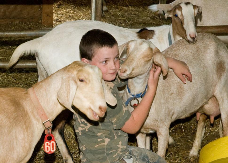 Side Hill Acres Goat Farm