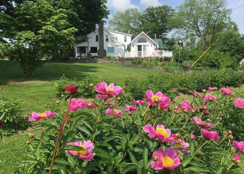 Enfield Manor is surrounded by flowers, ponds and conservation land.