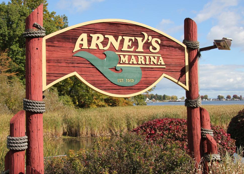 Arny's sign