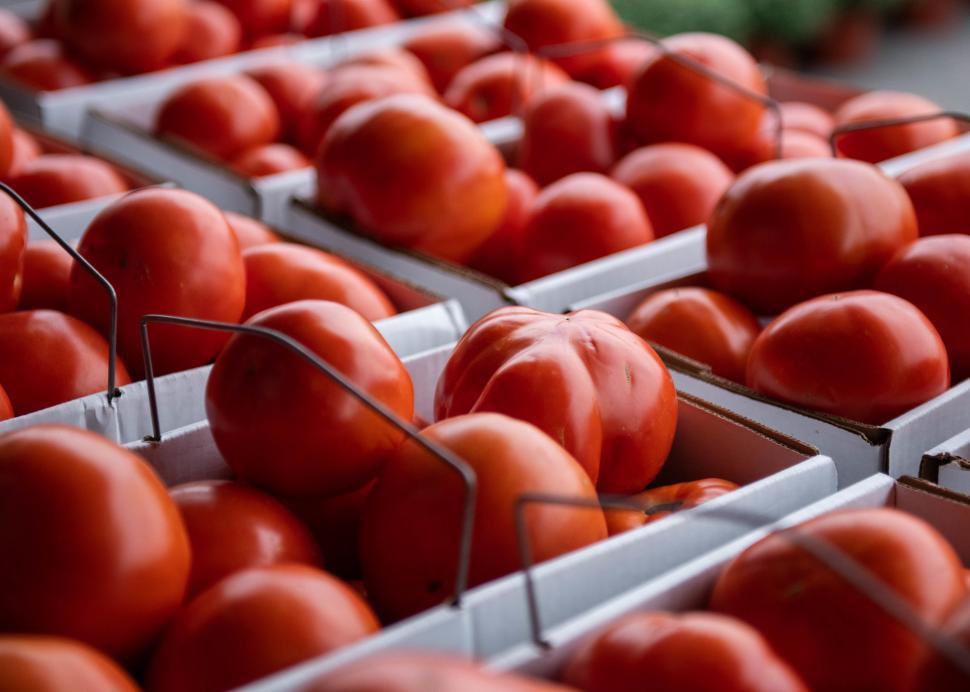 Fresh tomato's sitting in baskets at Joseph's Wayside Market