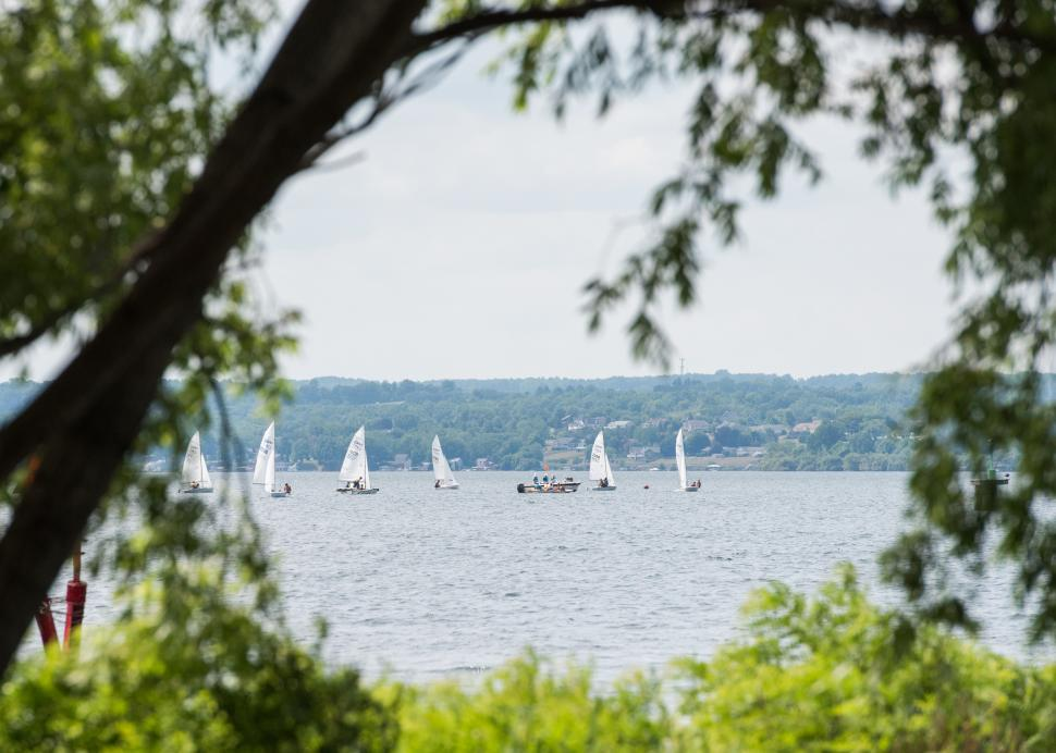 Sailboats enjoy a beautiful summer day out on the water by Seneca Lake State Park