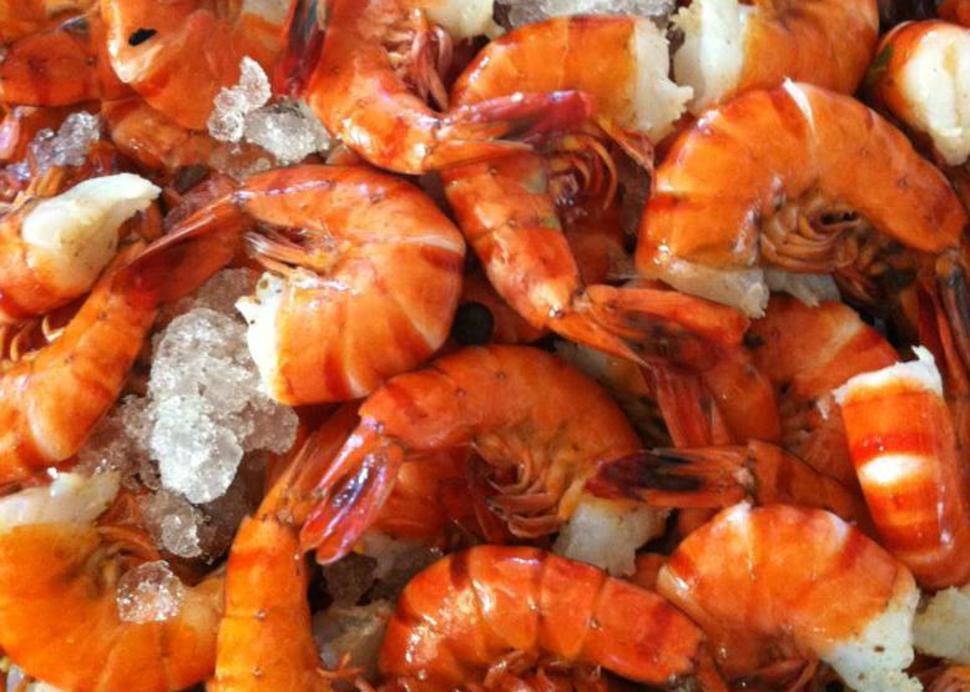 Shrimps!.jpg
