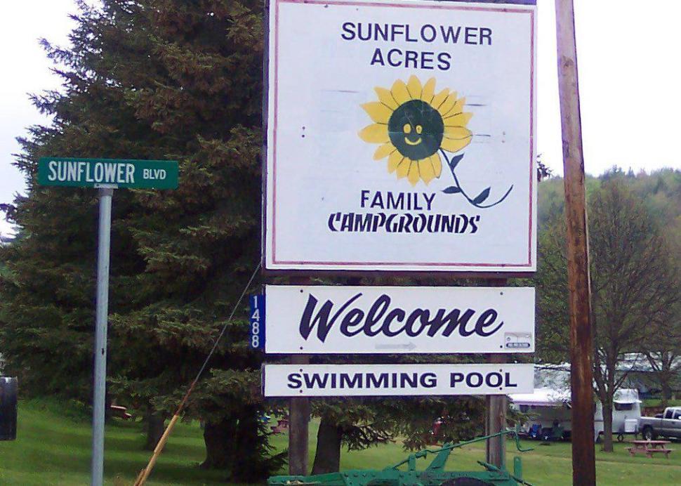 Sunflower Acres