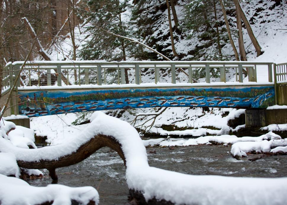 A bridge in the wintertime at Grimes Glen Park