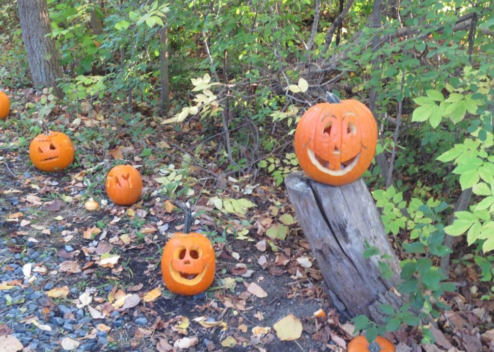 Great Pumpkin Walk event on the trail
