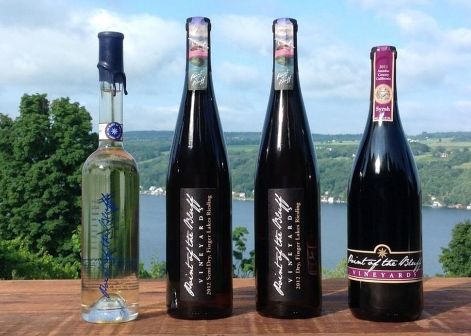 Point of the Bluff Vineyards