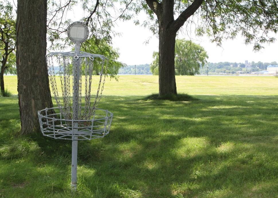 5 & 20 Disc Golf
