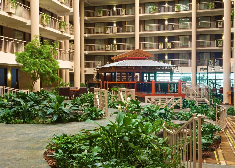 Tropical Atrium 2