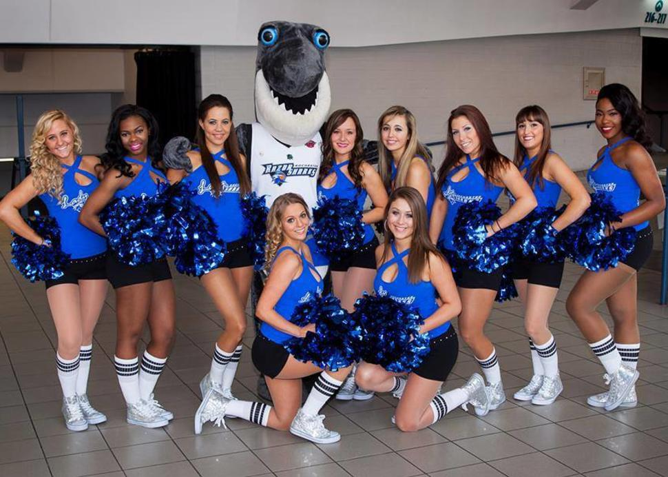 Finley the Shark and the Cheer Squad, Rochester Razor Sharks