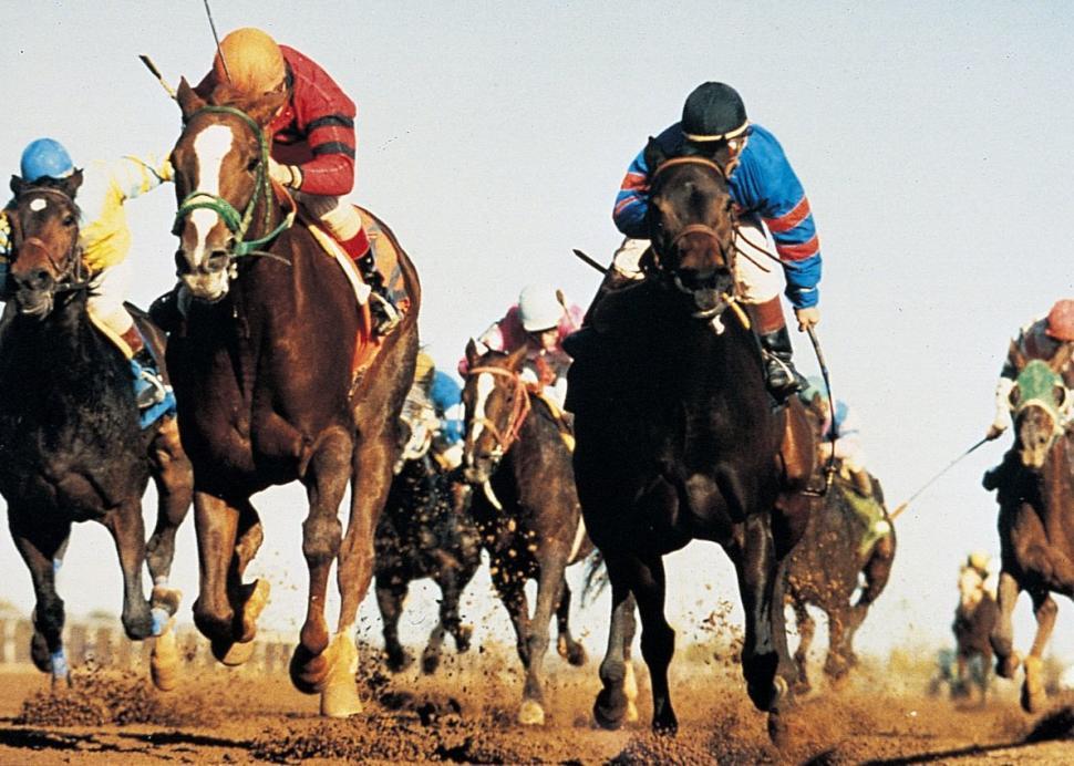 FingerLakes_Gaming&Racetrack_2.jpg