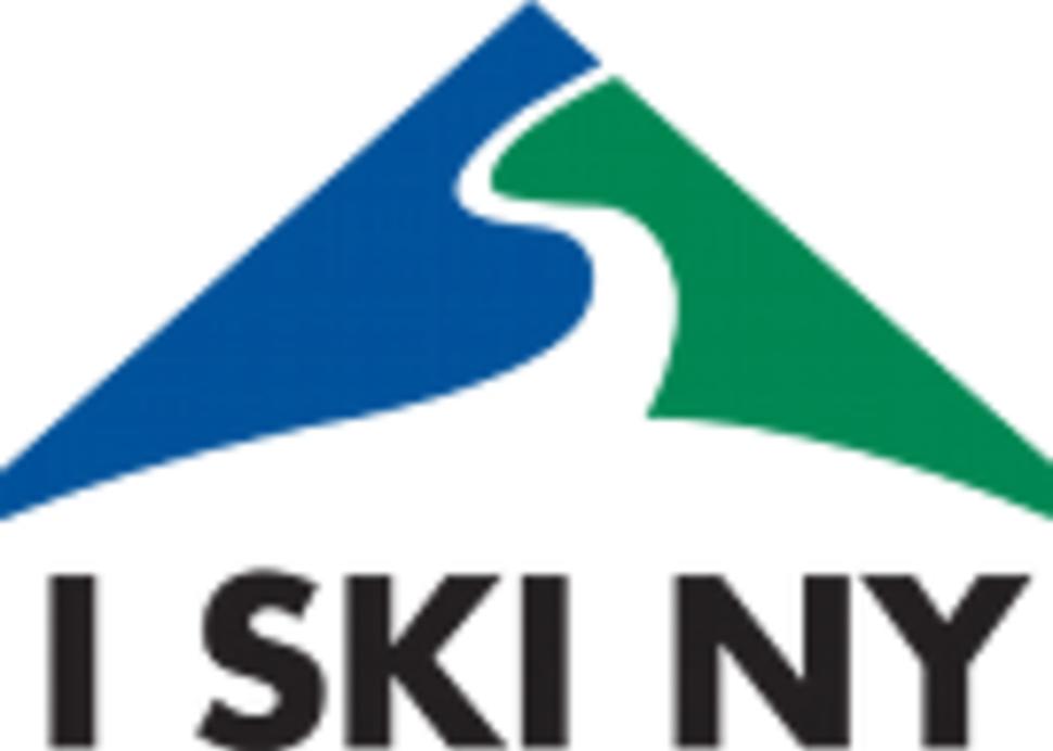 ski areas of ny inc