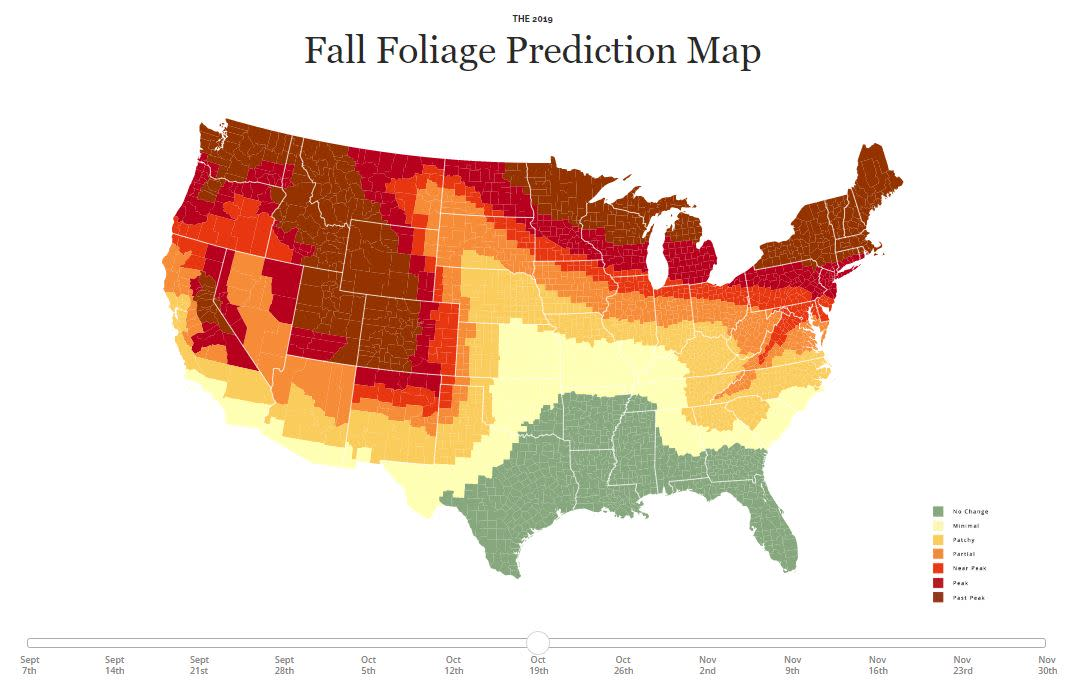 Fall Foliage Prediction Map 2019