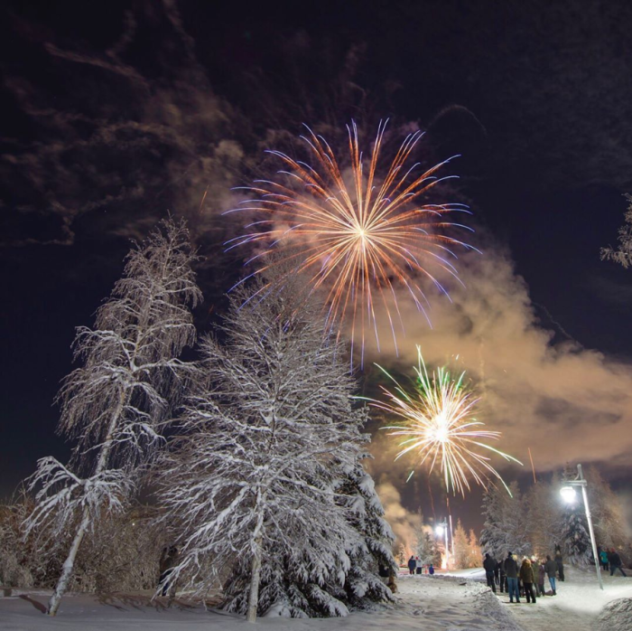 Fireworks light up the sky over a park with snowy trees in winter