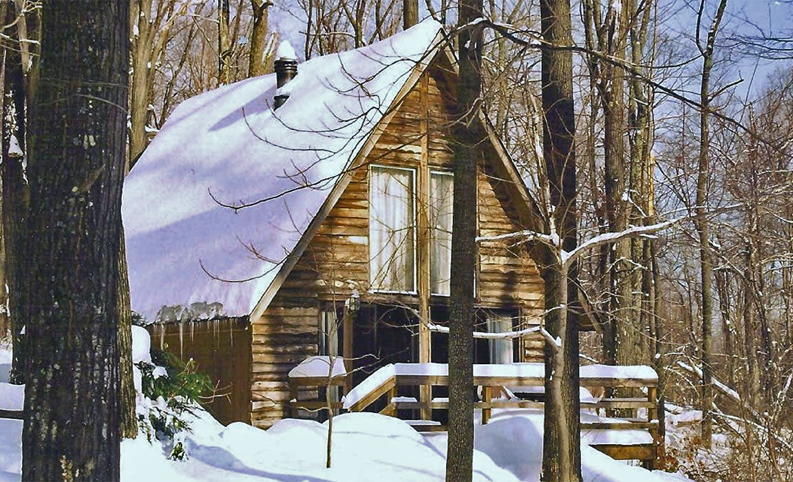 Ole Mink Farm Cabin in Snow