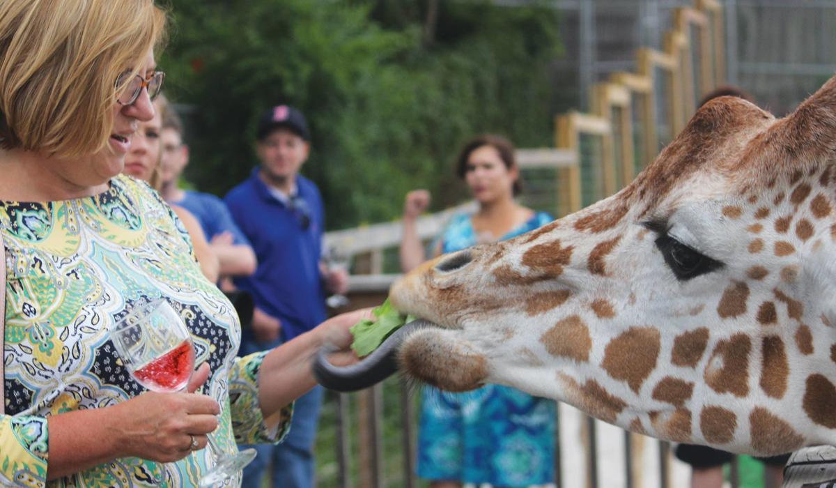 The Wine Safari at Elmwood Park Zoo includes a giraffe feeding experience.