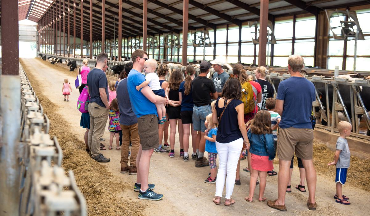 Participants of the Meet the Sassy Cows experience listen as their guide provides information