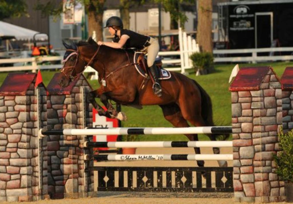 Great Southwest Equestrian Center, The