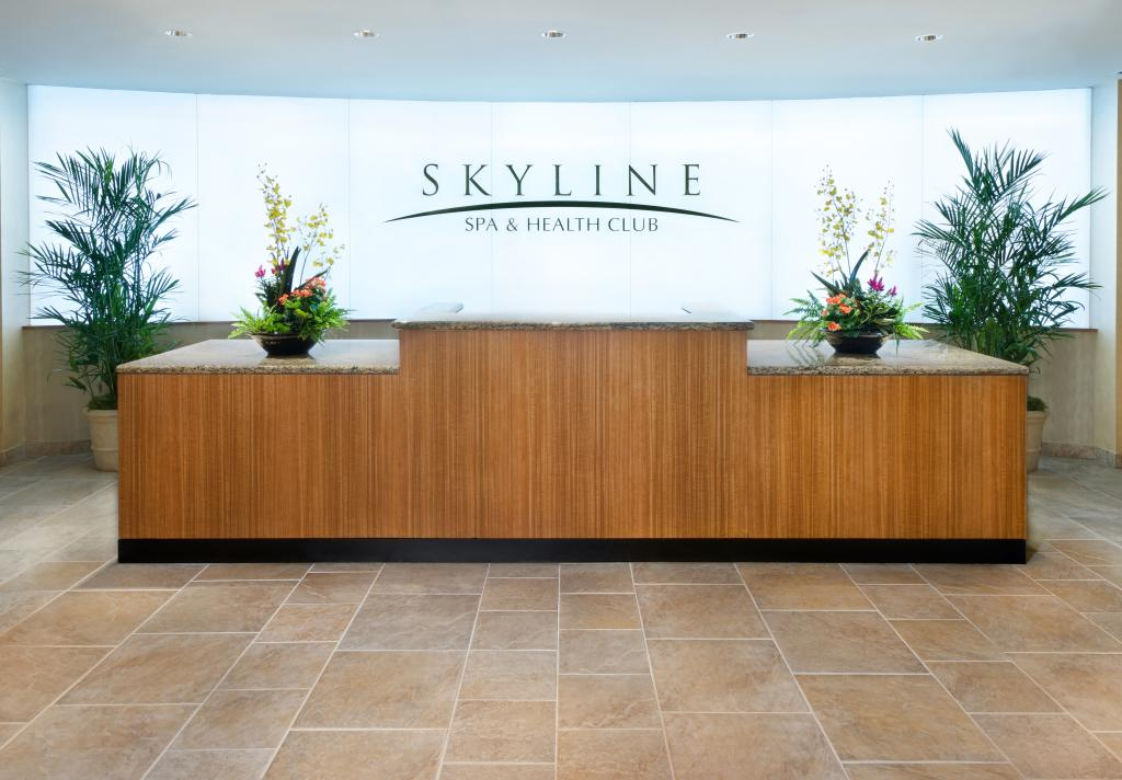 Skyline Reception