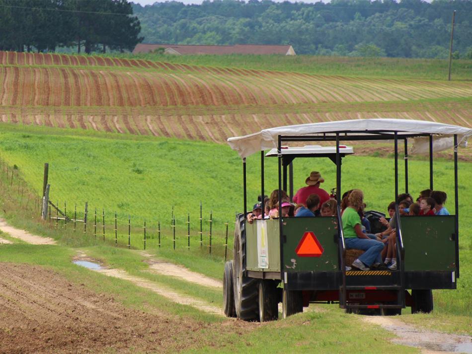 Enjoy a trolley ride on the Lazy O Farm, located near Smithfield, NC.