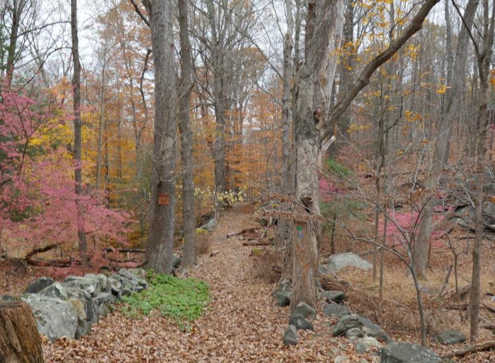 Briarcliff-Peekskill Trailway