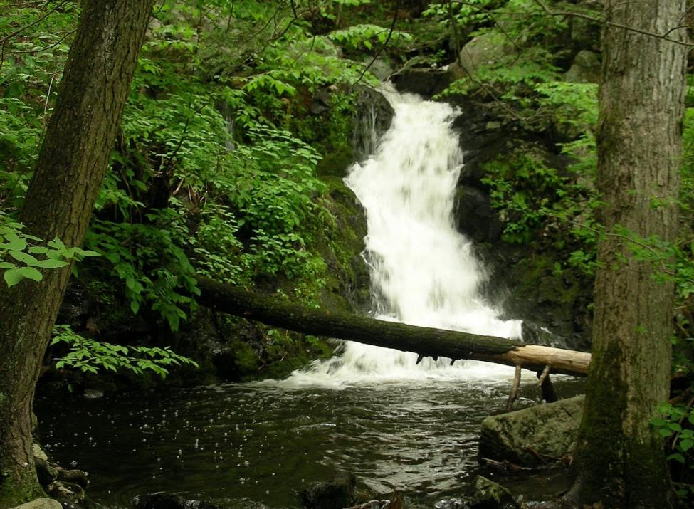 mianus river gorge