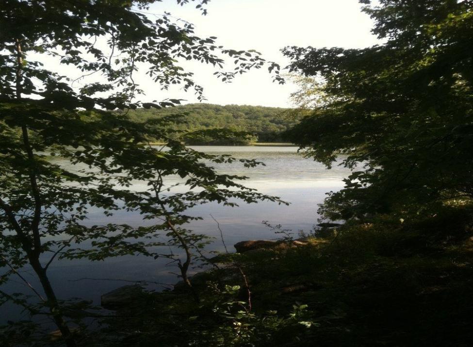 silver lake preserve