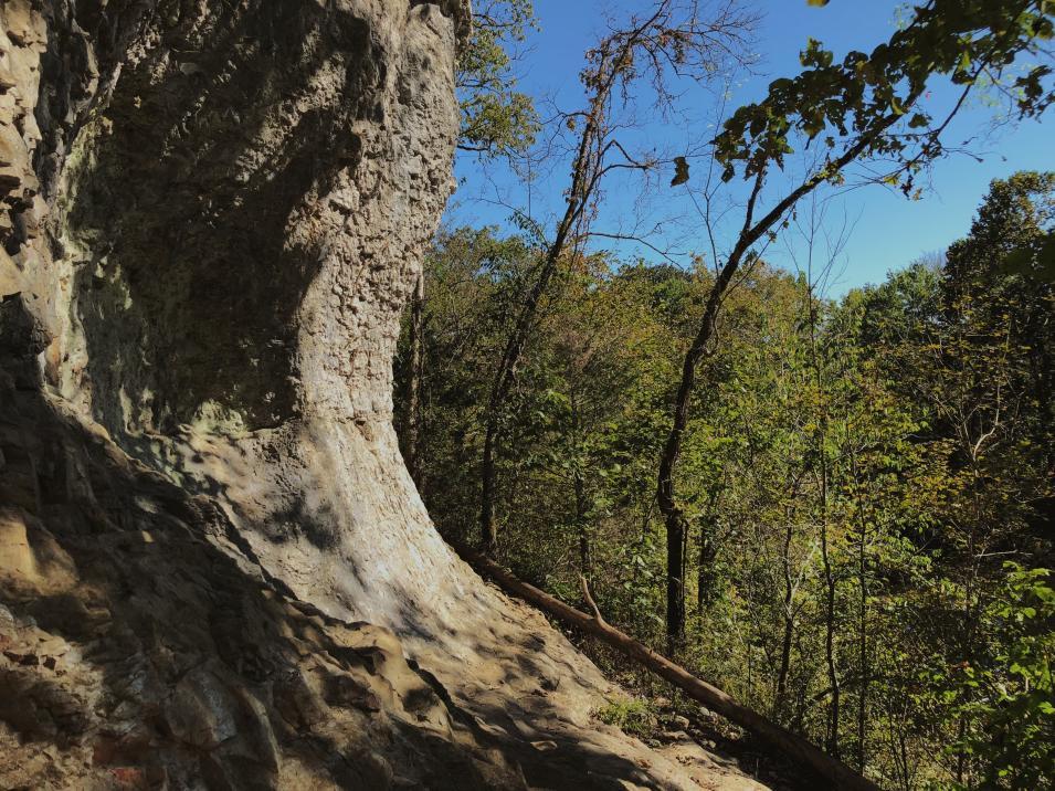 Cheeks Bend Bluff