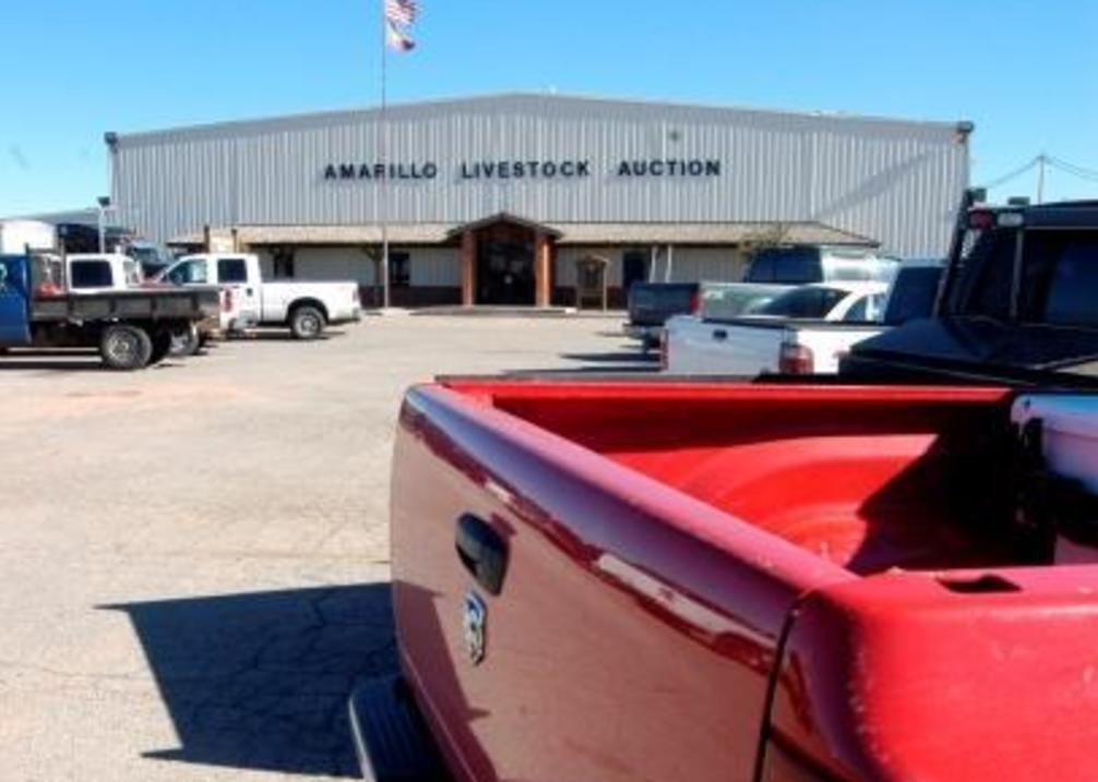 Auction exterior
