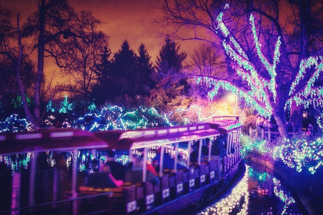 Cincinnati Zoo Festival of Lights train