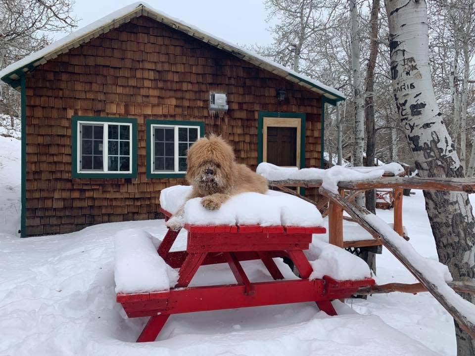 Twin Lakes Resort winter cabin