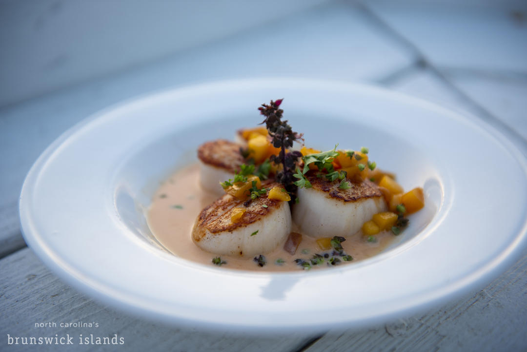 Watermark_Scallops Jinks Creek OIB